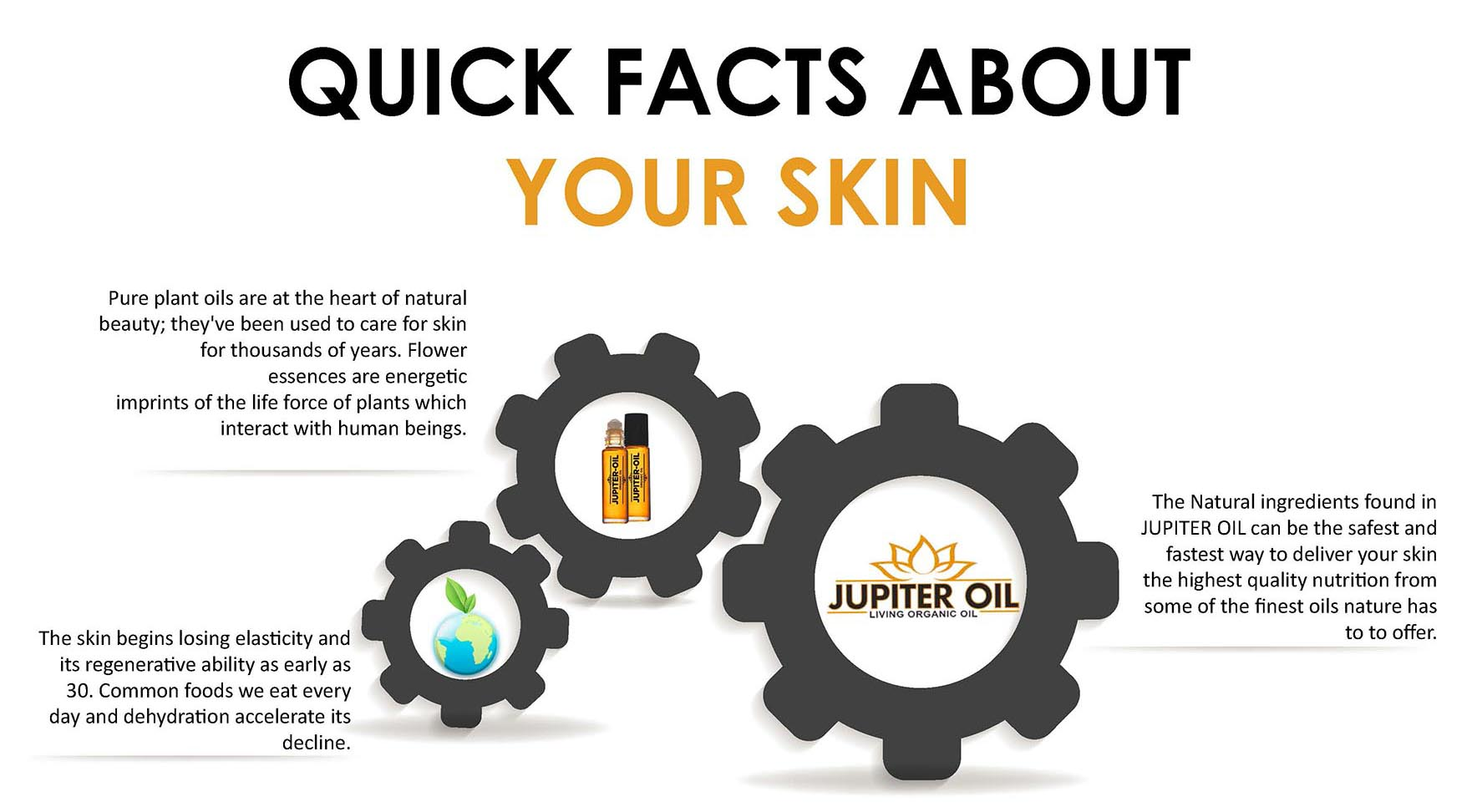QUICK FACTS ABOUT YOUR SKIN2
